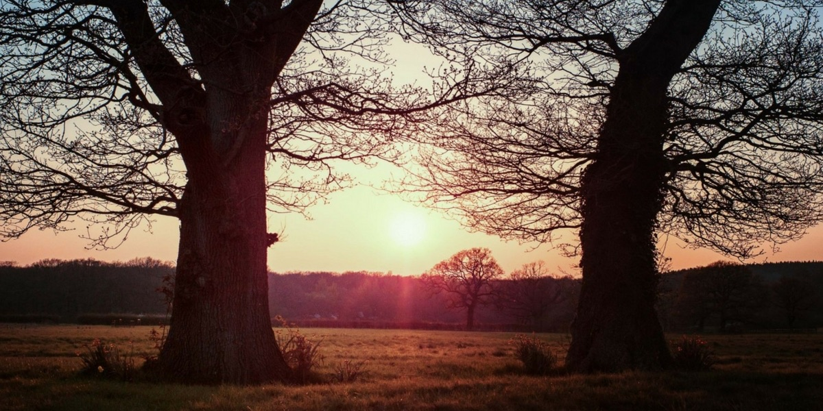 Yoga Weekend Retreat in Somerset